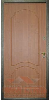 metallicheskay-dver-45.1