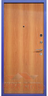 metallicheskay-dver-50.1